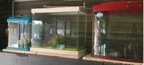 Aquarium Small Fish Pot Wholesale Supplier From Ahmedabad