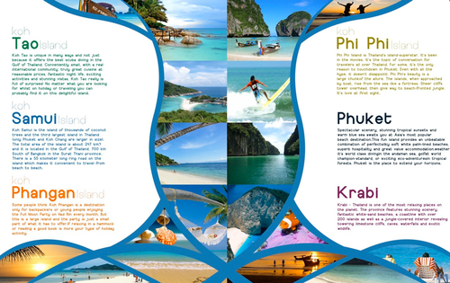 brochure two fold brochure manufacturer from rajkot